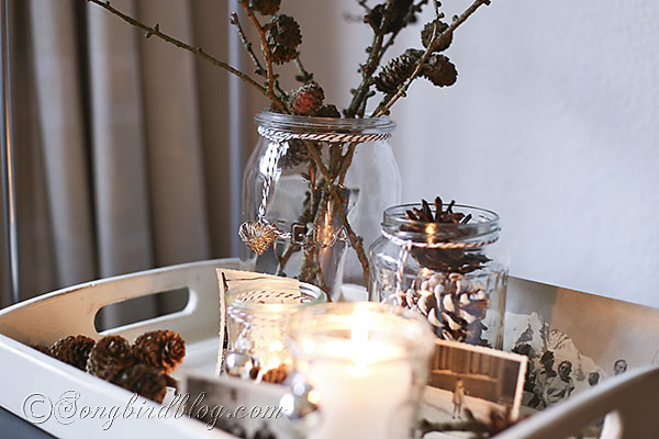 simple-natural-Christmas-vignette-Songbird-5