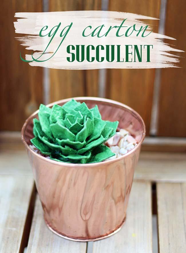 egg carton succulent - cover 2 - 650